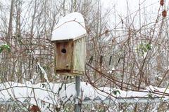 Ισχυρή χιονόπτωση σε ένα birdhouse Στοκ Φωτογραφίες