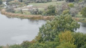 Ισχυρός άνεμος πέρα από τον ποταμό και δάσος το φθινόπωρο Όμορφη άποψη του ποταμού και του δάσους απόθεμα βίντεο