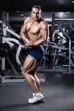 Ισχυρός αθλητικός πρότυπος κορμός ικανότητας ατόμων που παρουσιάζει μυς στοκ εικόνα με δικαίωμα ελεύθερης χρήσης