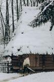 Ισχυρός Βίκινγκ με το δέρμα ξιφών και λύκων που περπατά προς το historica Στοκ φωτογραφίες με δικαίωμα ελεύθερης χρήσης
