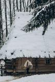 Ισχυρός Βίκινγκ με το δέρμα ξιφών και λύκων που περπατά προς το historica Στοκ εικόνες με δικαίωμα ελεύθερης χρήσης
