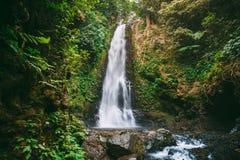 Ισχυρός καταρράκτης στην τροπική ζούγκλα στο Μπαλί Όμορφη θέση για τον τουρισμό στοκ φωτογραφίες