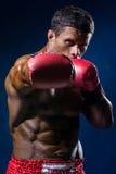 Ισχυρός μυϊκός μπόξερ στα κόκκινα εγκιβωτίζοντας γάντια στοκ εικόνες
