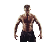 Ισχυρό αθλητικό άτομο στο άσπρο υπόβαθρο Στοκ Εικόνες