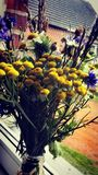 Ισχύς λουλουδιών Στοκ φωτογραφίες με δικαίωμα ελεύθερης χρήσης