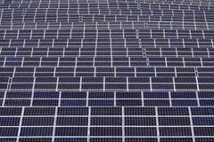 ισχύς φυτών ηλιακή Στοκ φωτογραφίες με δικαίωμα ελεύθερης χρήσης