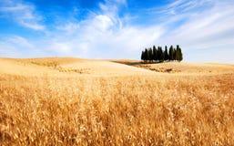 Ιταλία Τοσκάνη Στοκ Εικόνα