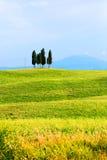 Ιταλία Τοσκάνη στοκ φωτογραφία