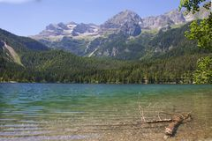 Ιταλία, Alto Adige: Αντανάκλαση στη λίμνη Tovel Στοκ φωτογραφίες με δικαίωμα ελεύθερης χρήσης