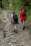 Ιταλία, Valle δ ` Aosta, στις 29 Ιουλίου 2017: δύο οδοιπόροι που περπατούν σε ένα pathon τα βουνά Στοκ φωτογραφίες με δικαίωμα ελεύθερης χρήσης