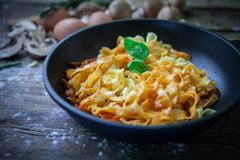 Ιταλικά φρέσκα ζυμαρικά Στοκ Εικόνες
