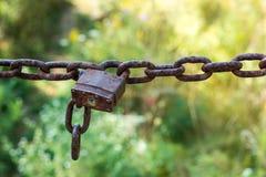 ιταλική ιδιωτική ιδιοκτησία συμβουλών χαρακτηριστική Στοκ εικόνες με δικαίωμα ελεύθερης χρήσης