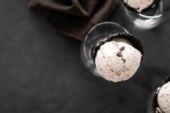 Ιταλική σέσουλα παγωτού stracciatella ειδικότητας με τις νιφάδες της σκοτεινής σοκολάτας σε ένα κρεμώδες παγωτό βανίλιας Τοπ όψη στοκ εικόνες