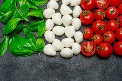 Ιταλική σημαία φιαγμένη από τυρί, βασιλικό και ντομάτες μοτσαρελών caprese σαλάτα Στοκ εικόνες με δικαίωμα ελεύθερης χρήσης
