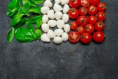 Ιταλική σημαία φιαγμένη από τυρί, βασιλικό και ντομάτες μοτσαρελών caprese σαλάτα Στοκ Φωτογραφία