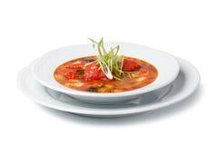 ιταλική σούπα Στοκ φωτογραφία με δικαίωμα ελεύθερης χρήσης