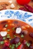 ιταλική σούπα minestrone Στοκ φωτογραφία με δικαίωμα ελεύθερης χρήσης