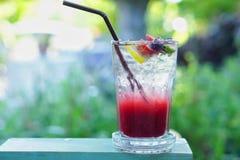 Ιταλική σόδα φρούτων μιγμάτων Στοκ Εικόνες