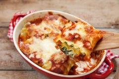 Ιταλικοί ρόλοι lasagna με το σπανάκι ντοματών και το τυρί ricotta στοκ φωτογραφία