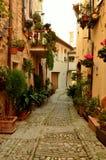 ιταλικός παλαιός στενωπών στοκ εικόνα με δικαίωμα ελεύθερης χρήσης