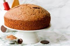 Ιταλικό κέικ σφουγγαριών σοκολάτας Στοκ Εικόνες