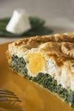 Ιταλικό πίτα Στοκ εικόνα με δικαίωμα ελεύθερης χρήσης
