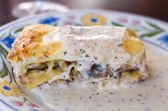 ιταλικό πιάτο lasagna Στοκ εικόνες με δικαίωμα ελεύθερης χρήσης