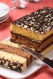 ιταλικό σφουγγάρι κέικ στοκ φωτογραφίες με δικαίωμα ελεύθερης χρήσης