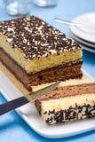 ιταλικό σφουγγάρι κέικ στοκ φωτογραφία με δικαίωμα ελεύθερης χρήσης