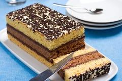 ιταλικό σφουγγάρι κέικ στοκ εικόνες