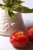 ιταλικό ricotta τυριών Στοκ φωτογραφία με δικαίωμα ελεύθερης χρήσης