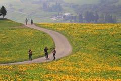 Ιταλία, Trentino Alto Adige, Siusi allo Sciliar Στοκ φωτογραφία με δικαίωμα ελεύθερης χρήσης