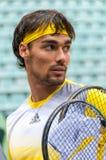 Ιταλικός τενίστας Fabio Fognini Στοκ εικόνα με δικαίωμα ελεύθερης χρήσης