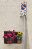 Ιταλικό παράθυρο λουλουδιών στοκ εικόνες με δικαίωμα ελεύθερης χρήσης