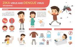 Ιός Zika και ιός δαγκείου infographic Στοκ Εικόνα