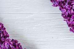 Ιώδεις κλάδοι στις γωνίες της άσπρης ξύλινης επιφάνειας Εικόνα στούντιο αντίθεσης στοκ φωτογραφία με δικαίωμα ελεύθερης χρήσης