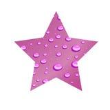 Ιώδες αστέρι. Διανυσματική απεικόνιση Στοκ Εικόνες