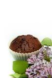 ιώδες muffin σοκολάτας Στοκ φωτογραφία με δικαίωμα ελεύθερης χρήσης