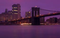 Ιώδης κόσμος γέφυρα Μπρούκλιν nyc στοκ εικόνες