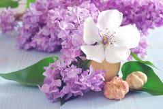 Ιώδες πορφυρό υπόβαθρο λουλουδιών ρομαντικό Στοκ εικόνες με δικαίωμα ελεύθερης χρήσης