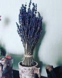 Ιώδες φυσικό οργανικό σπίτι θερινών καλό φύλλων lavander στοκ φωτογραφία