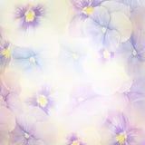 Ιώδης ανασκόπηση λουλουδιών Στοκ Εικόνα