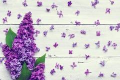 Ιώδης ανθοδέσμη λουλουδιών πέρα από το άσπρο ξύλινο υπόβαθρο Στοκ εικόνες με δικαίωμα ελεύθερης χρήσης