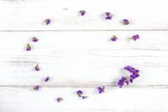Ιώδης σύνθεση πλαισίων λουλουδιών σε ένα αγροτικό άσπρο ξύλινο υπόβαθρο, Στοκ Εικόνες