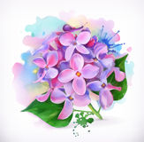 Ιώδη λουλούδια, ζωγραφική watercolor Στοκ εικόνες με δικαίωμα ελεύθερης χρήσης