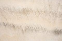 ιδανική σύσταση άμμου ανασκοπήσεων πρεσών Ινδονησία Στοκ Εικόνες