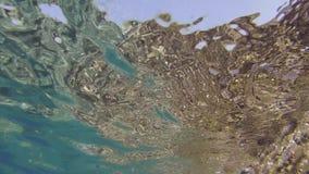 Ιδιαίτερο όραμα του μεσογειακού βυθού του νησιού Ventotene φιλμ μικρού μήκους