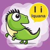 Ι κινούμενα σχέδια και αλφάβητο χρώματος Iguana για τα παιδιά στην εκμάθηση vec Στοκ φωτογραφία με δικαίωμα ελεύθερης χρήσης