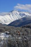 Κάθετη εικόνα βουνών χειμερινών τοπίων στο Winter Park, Κολοράντο Στοκ φωτογραφία με δικαίωμα ελεύθερης χρήσης