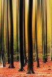 Κάθετη θαμπάδα φθινοπώρου Στοκ εικόνες με δικαίωμα ελεύθερης χρήσης